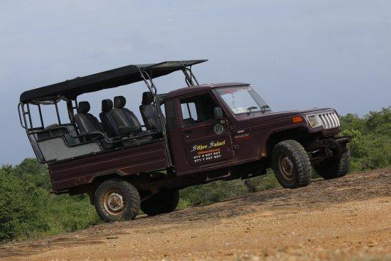 uduwalawe_jeep